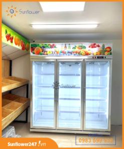 Tủ mát bảo quản hoa quả LCR-1860F chính hãng làm lạnh nhanh.