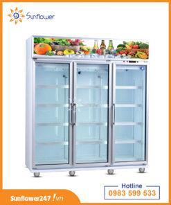 tủ mát 3 cánh bảo quản hoa quả, nước ngọt