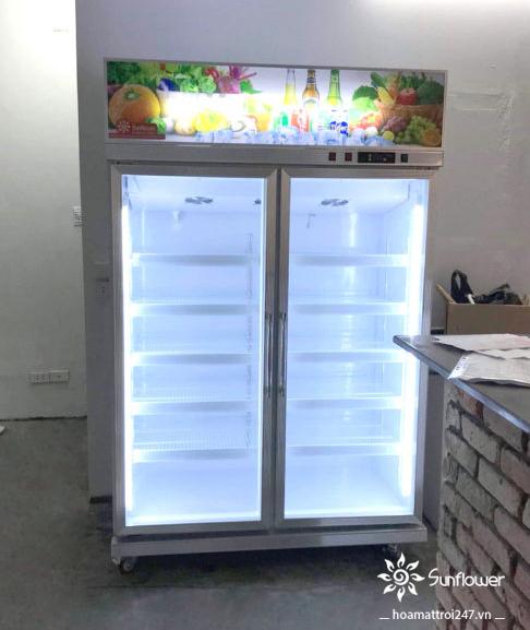 Tủ mát 2 cánh bảo quản được nhiều thực phẩm mà không tốn diện tích như những dòng tủ nằm