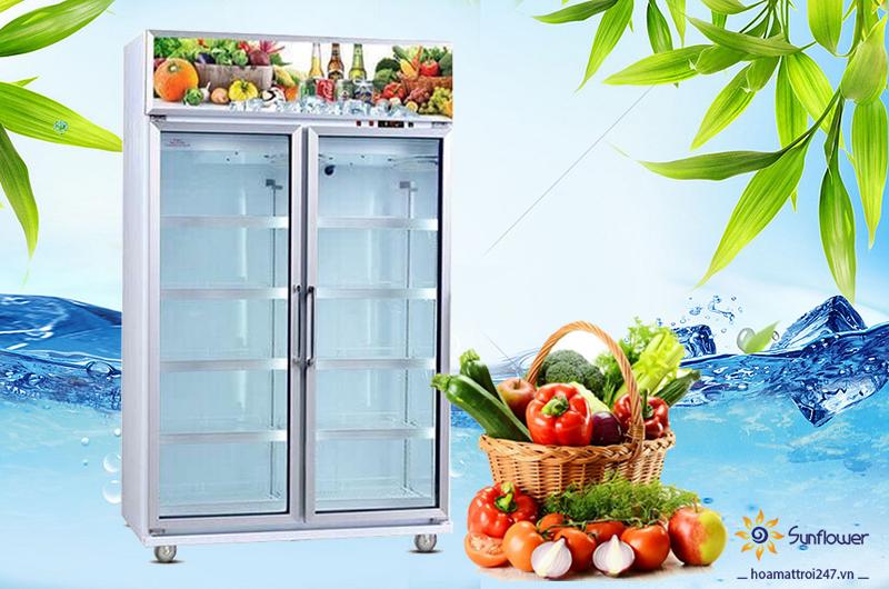 Tủ mát 2 cánh kính LC-980F trưng bày trái cây, rau củ, nước ngọt thích hợp cho các nhà hàng, khách sạn, siêu thị