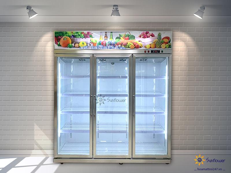 Tủ mát 3 cánh kính bảo quản được các loại trái cây, thực phẩm, nước giải khát, sữa...
