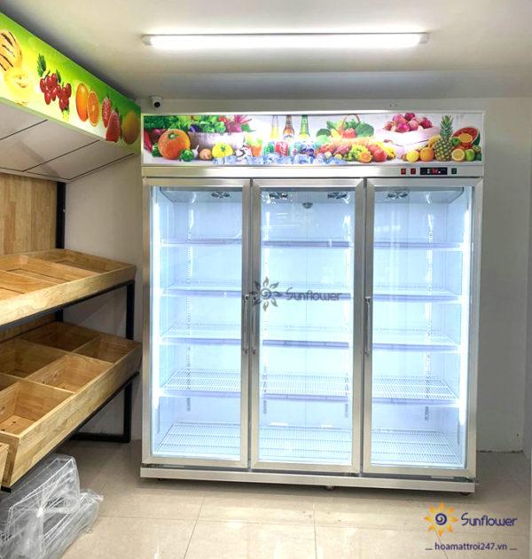Thiết kế 3 cánh dạng đứng, dòng tủ mát này có thể trưng bày nhiều loại thực phẩm mà không tốn diện tích như loại tủ nằm