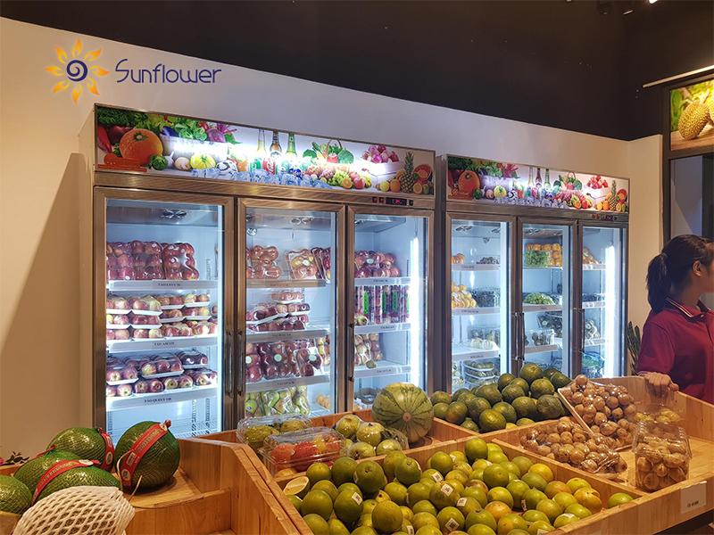 Tủ mát 3 cánh cửa kéo là cánh tay đắc lực trong việc bảo quản hoa quả luôn tươi ngon.