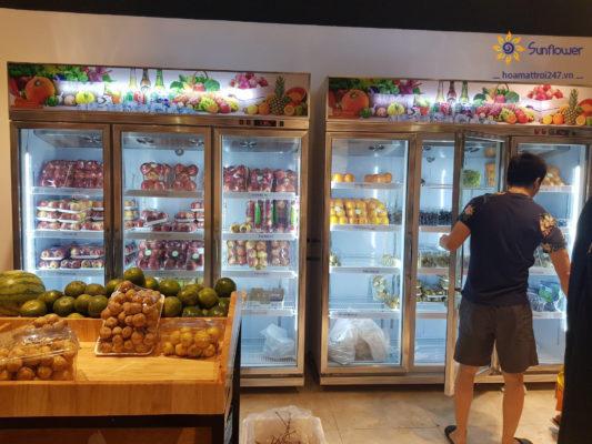 Dòng tủ mát đựng hoa quả nhập khẩu, rau củ bán chạy nhất tại Hoa Mặt Trời