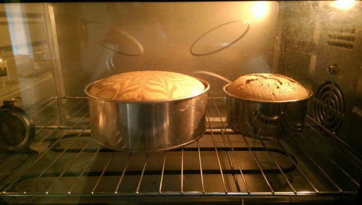 Dung tích của lò gia đình khá nhỏ, mỗi mẻ chỉ nướng được tầm 1 - 2 cốt bánh bông lan