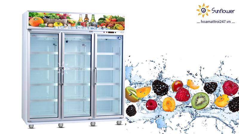 Mua tủ mát trưng bày nào phù hợp cho cửa hàng hoa quả nhập khẩu