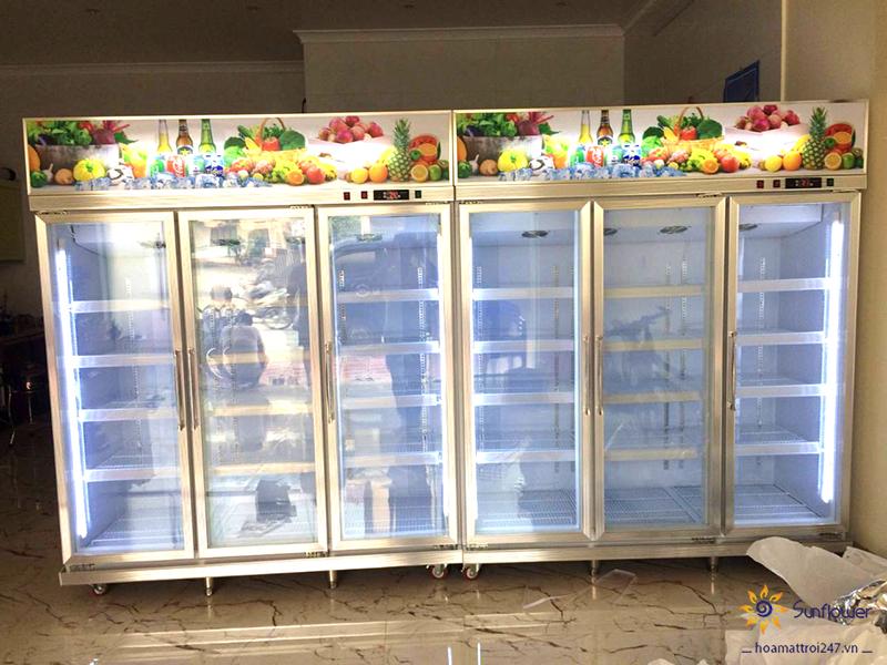 Kinh nghiệm chọn mua tủ mát 3 cánh giá rẻ chất lượng tốt