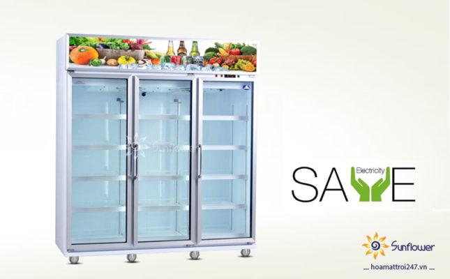 Mua tủ mát nào tiết kiệm điện năng nhất hiện nay cho cửa hàng.