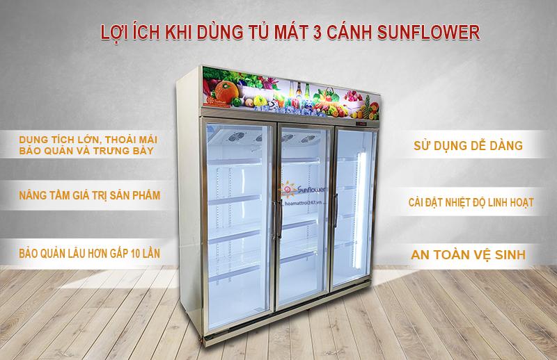 Lợi ích khi sử dụng Tủ mát 3 cánh Sunflower nhập khẩu
