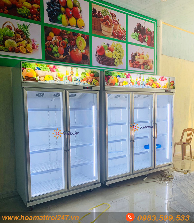 Com bo 2 Tủ mát cực hoàn hảo cho các cửa hàng trái cây nhập khẩu, hoa quả sạch.