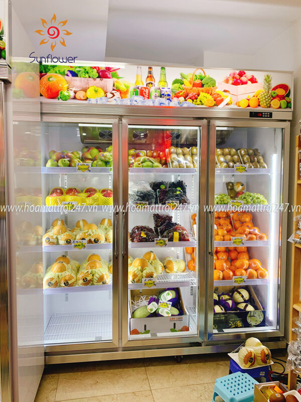 tủ mát bảo quản hoa quả