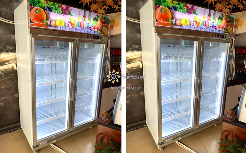 Tủ mát 2 cánh kính trưng bày hoa quả, nước ngọt, thực phẩm, bánh kem..