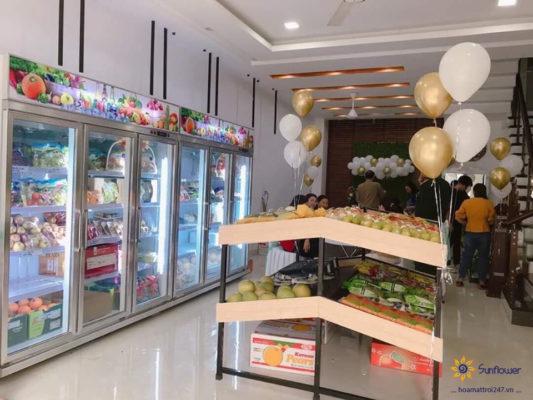 Tủ mát để hoa quả giúp nâng tầm cửa hàng của bạn