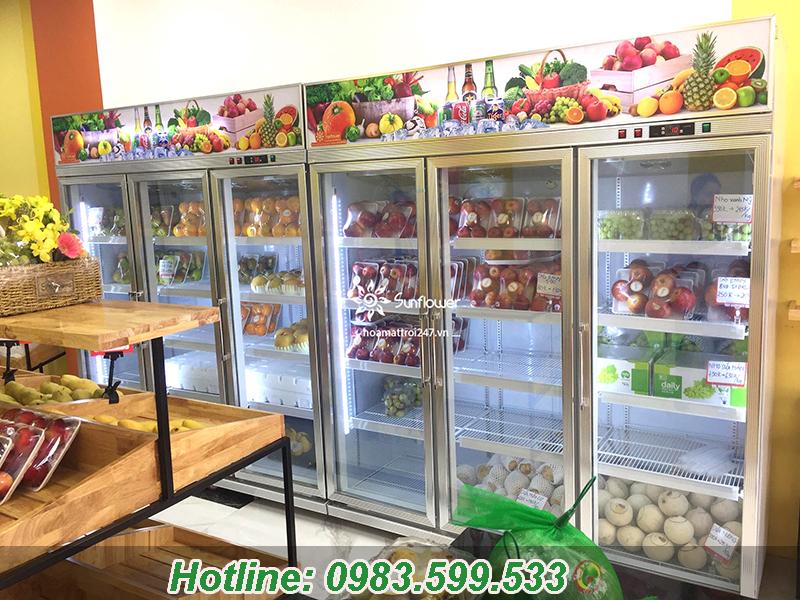Dòng tủ mát chuyên dụng 3 cánh Sunflower thích hợp cho siêu thị, cửa hàng hoa quả sạch, trái cây nhập khẩu