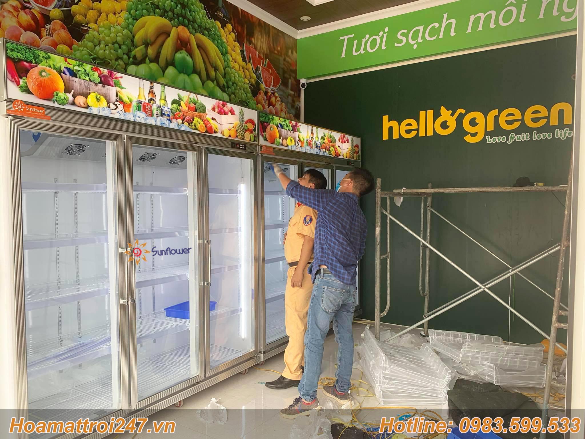 Một số dự án thi công lắp đặt tủ bảo quản trái cây 3 cánh kính Sunflower