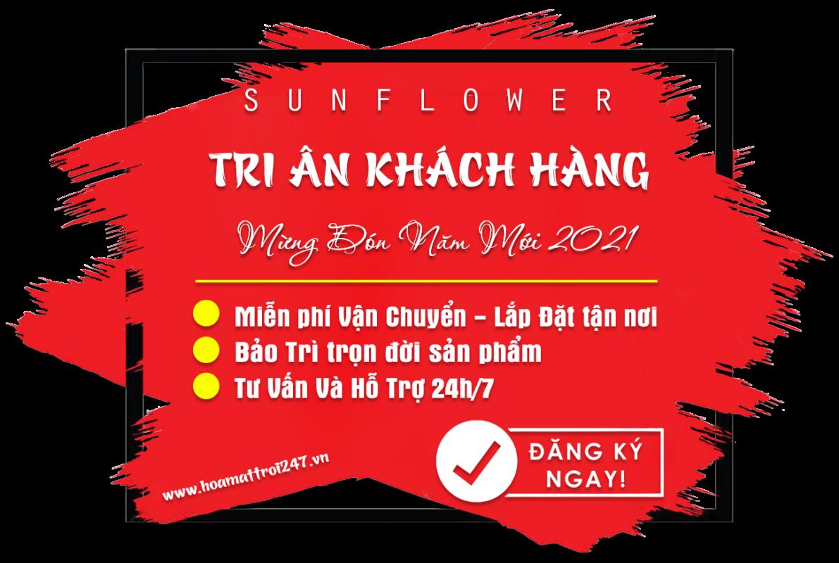 Tri ân khách hàng Sunflower