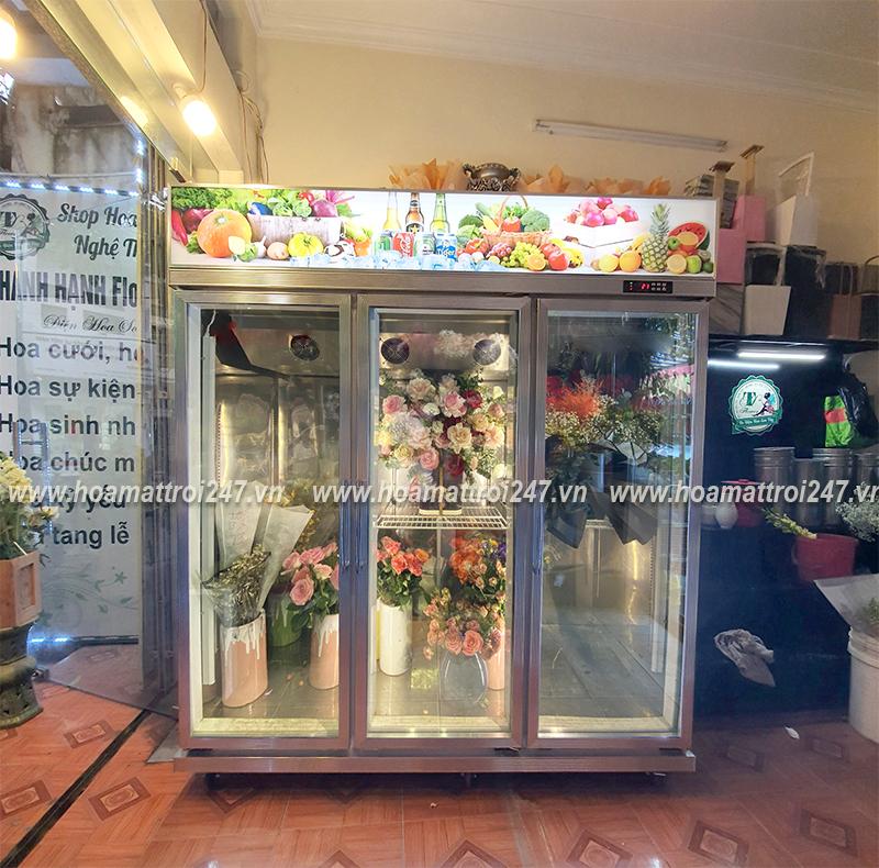 Tủ bảo quản và trưng bày hoa phù hợp với mọi tiệm hoa, khách sạn...