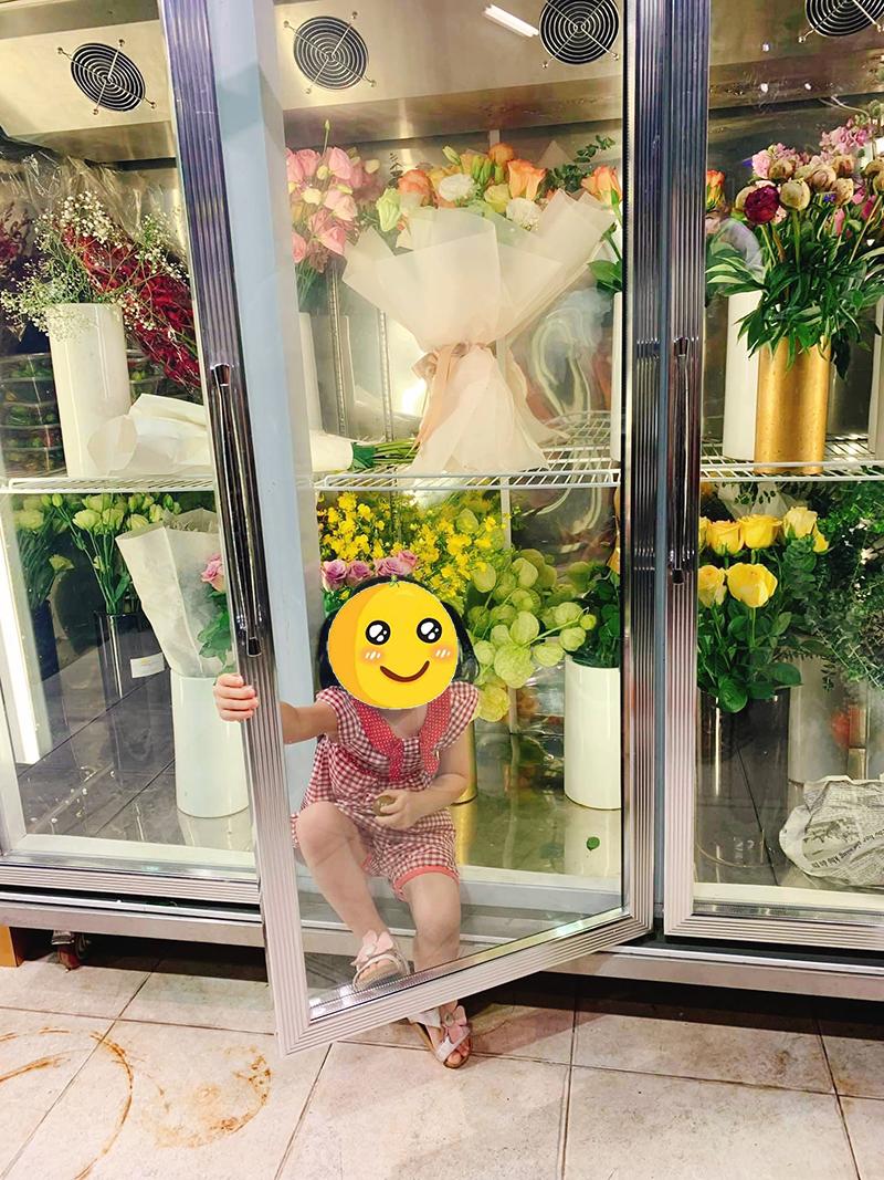 Một số loại hoa sau khi được bảo quản trong tủ mát sẽ giúp hoa có tuổi thọ lâu hơn.