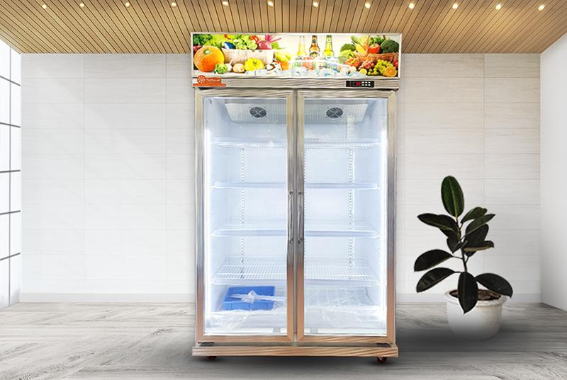 Kinh nghiệm chọn mua tủ mát 2 cánh kính chất lượng cao.
